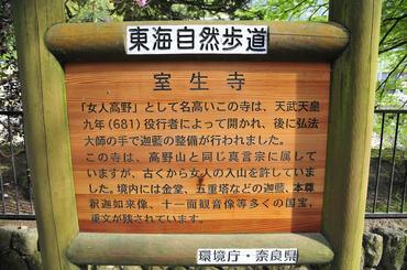 _DSC5564 編集.JPG